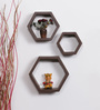 Ariana Set Of 3 Wall Shelf in Wenge by CasaCraft