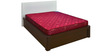 Flora 6 Inch Thick Spring Queen-Size Mattress by Nilkamal