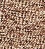 Florentino Carpet in Multicolour by CasaCraft