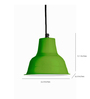 Ikkadukka Green Iron The Juno Light Pendant
