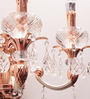 Jainsons Emporio Rose Copper Crystal Double Uplighter Wall Sconce Light