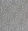 Marshalls Wallcoverings Grey Paper Wallpaper