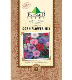 Pyramid Corn Flower Mix Seeds