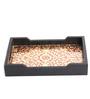 Sb Handicraft Gold & Maroon Meenakari Inlay Artwork Tray