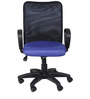 Signo Chair in Blue Colour by The Furniture Store