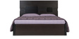 Triton II Queen Bed with Storage in Brown Colour by Durian