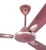 Usha Striker Platinum 1200 mm Lavender Chrome Ceiling Fan