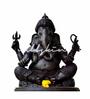 Wallskin Vinyl Ganesha in Your House Wall Decal